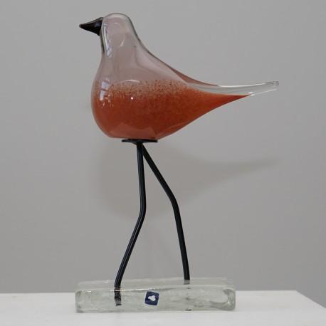 Glasvogel rot Leonardo